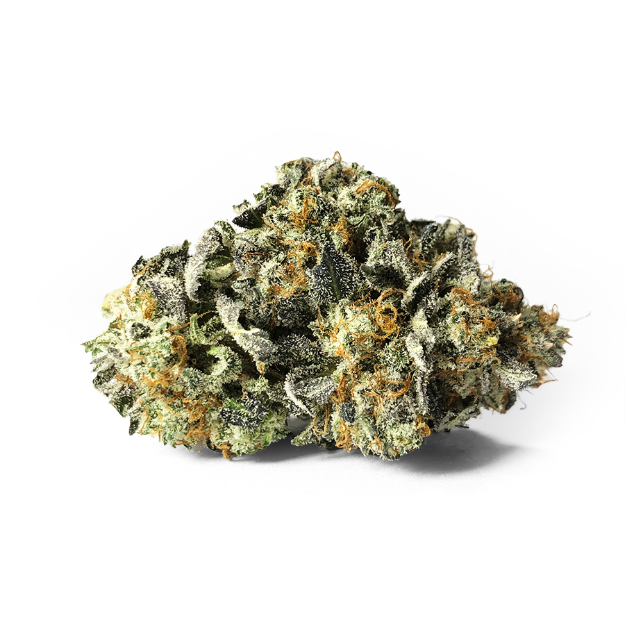 Dump Truck By Organic Roots