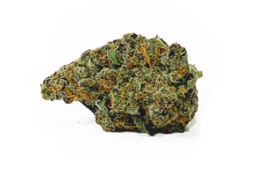 Apple Fritter by LAX/Wizard Trees