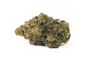 Purple Mac