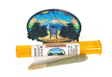 Confetti Cake 1g Pre-Roll (Skittlez Terps) 100% Nug Rolled by Fresh Flower Vibes CO